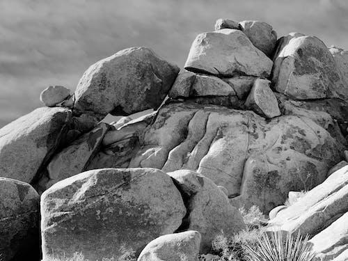 Free stock photo of bed of rocks, california, joshua tree