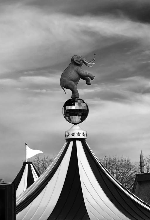 Black and white statue of elephant standing on hind legs on glitter ball placed on circus big top on overcast day