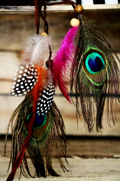 Set of multicolored feathers hanging on rope