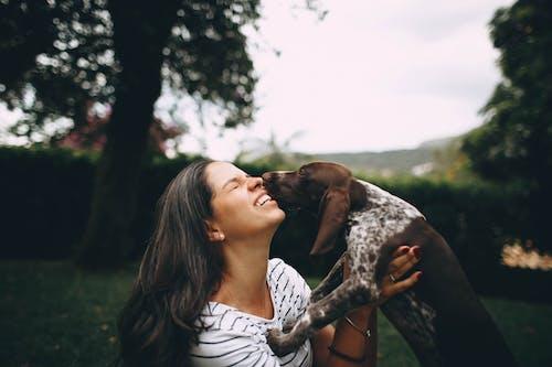 Gratis arkivbilde med hund, kjæledyr, kvinne, pattedyr
