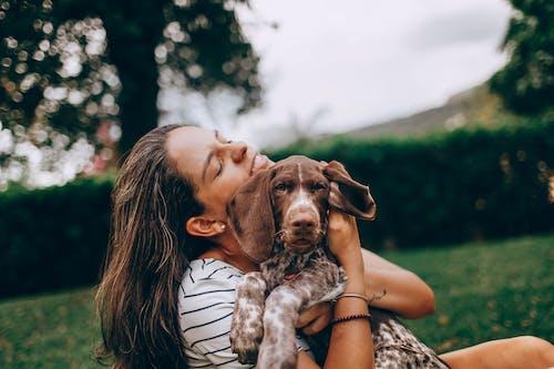 Gratis arkivbilde med dyr, hund, kjæledyr, kjærlighet