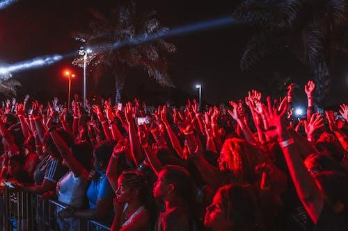 คลังภาพถ่ายฟรี ของ คน, คอนเสิร์ต, งานเทศกาล, ชีวิตยามค่ำคืน