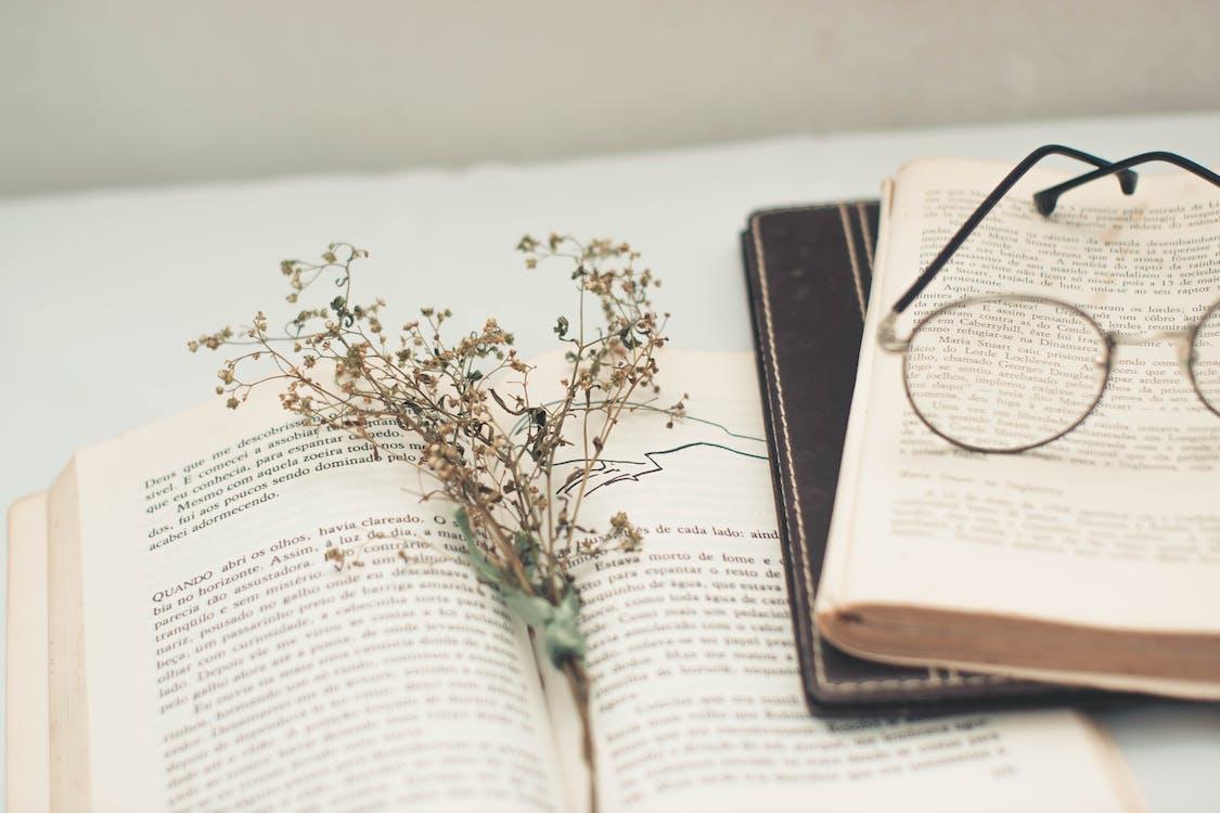 знания, книги, литература