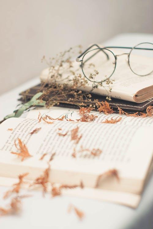 Silver Framed Eyeglasses on top of Open Books