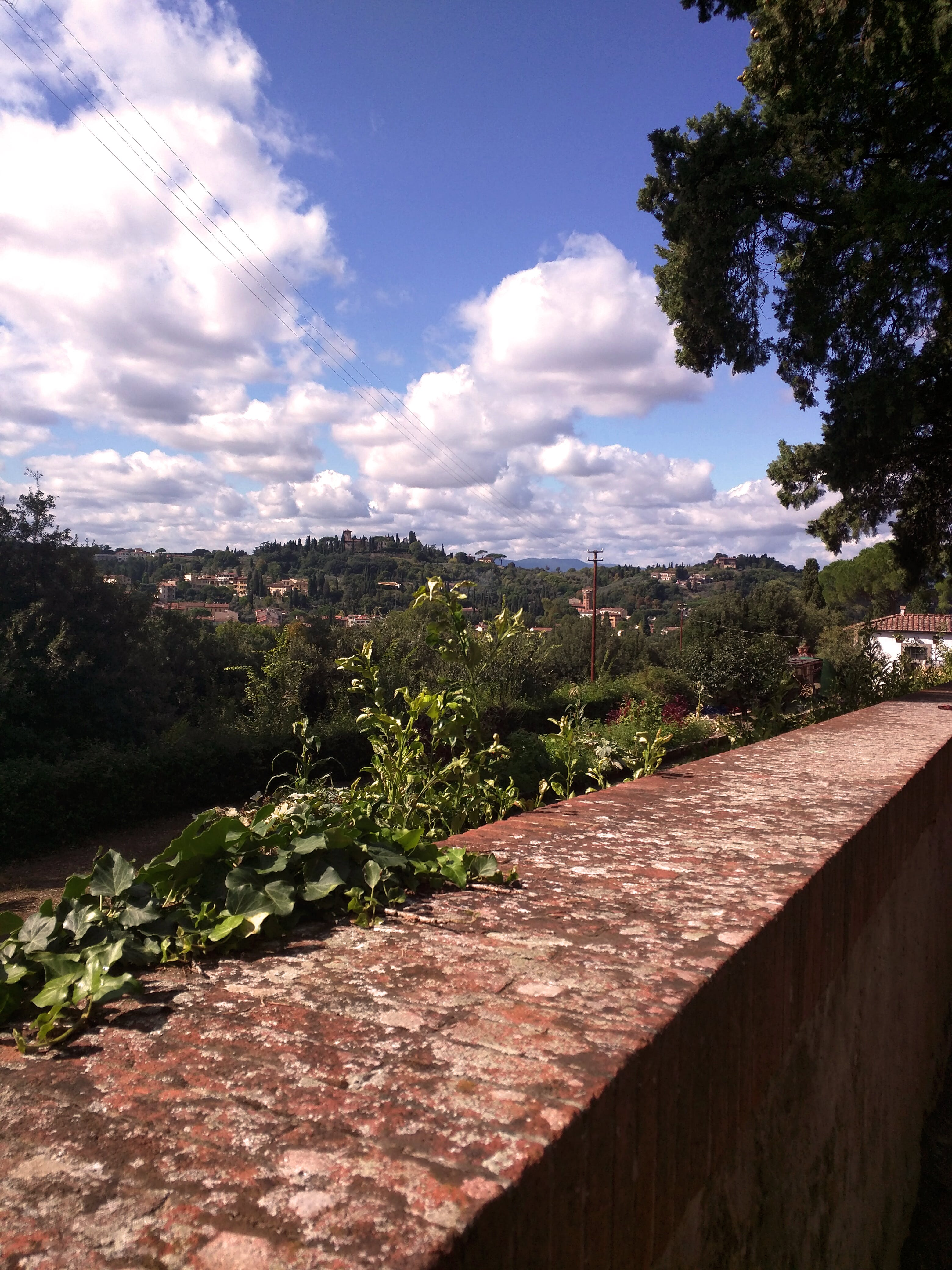 Free stock photo of florence, garden, view
