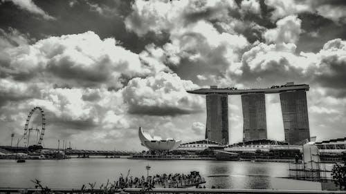 Free stock photo of black and white, monochrome, shotononeplus
