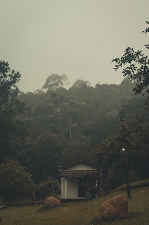Foto stok gratis rumah, rumah kosong