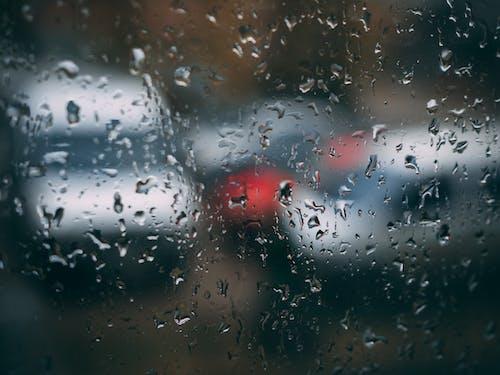 Gratis arkivbilde med dugg, glass, regn, regndråper