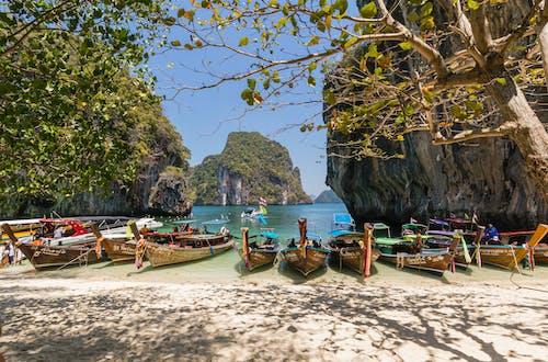 Photos gratuites de bateaux, bord de mer, branches d'arbre, destination de voyage