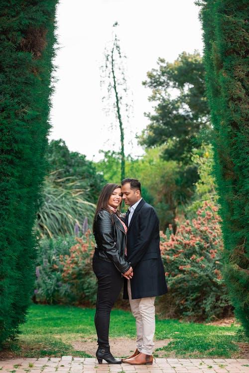 Foto profissional grátis de adultos, afeição, apaixonado, árvore