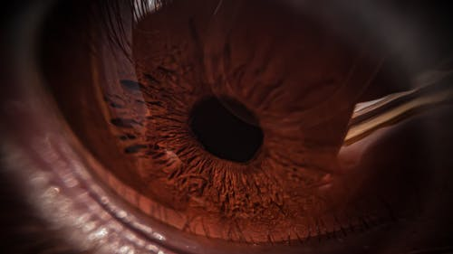 Close Up Photography of Brown Eye