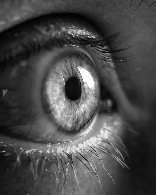 Grayscale Close-up Photo of Human Eye