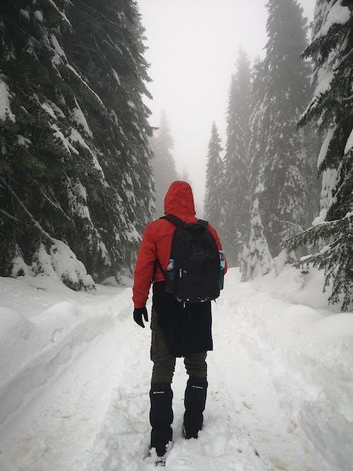 Osoba W Czerwonej Kurtce I Czarnych Spodniach Stojąca Na Pokrytym śniegiem Podłożu Z Plecakiem