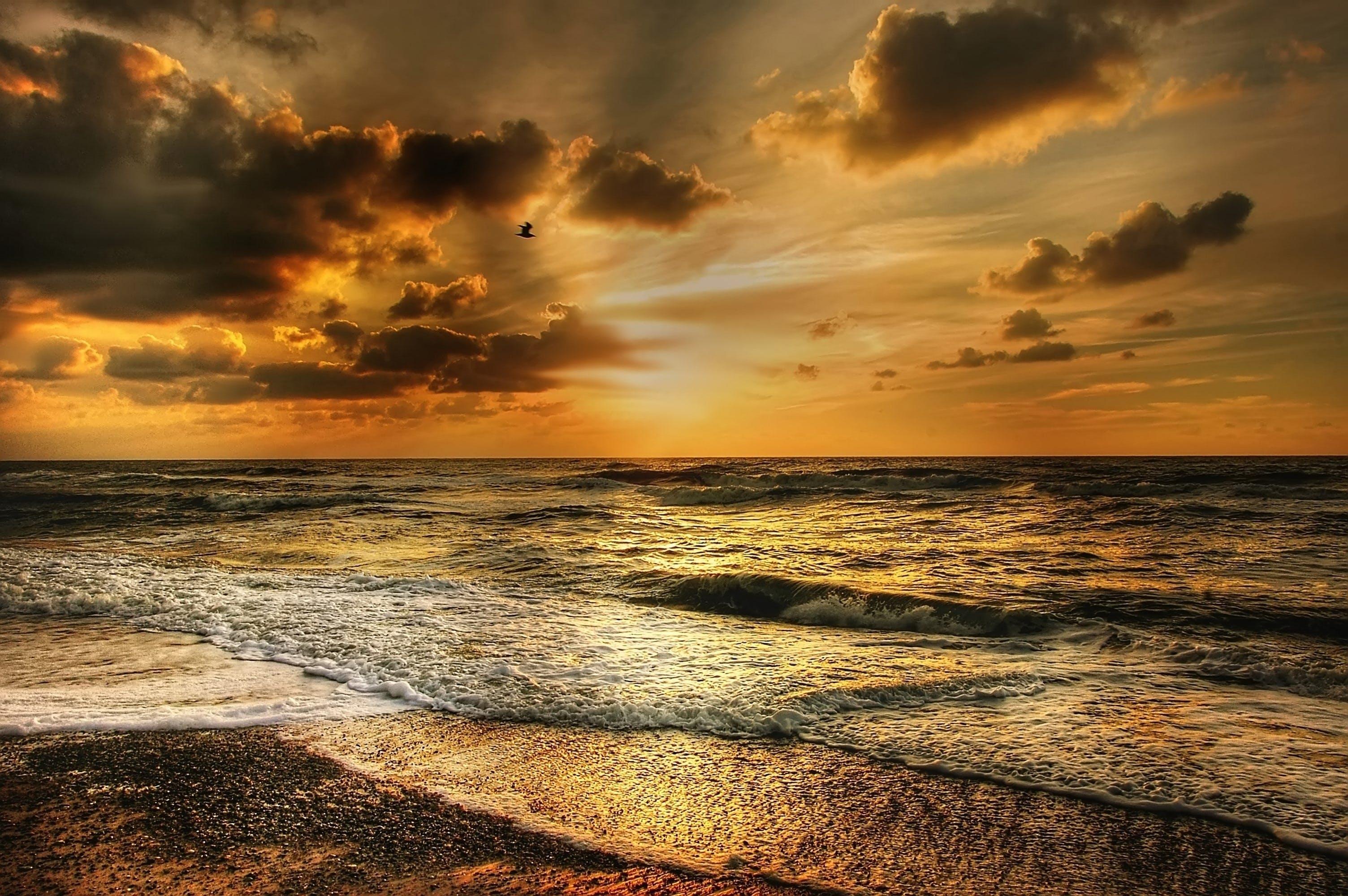 Darmowe zdjęcie z galerii z ciemne chmury, dramatyczny, fale, horyzont