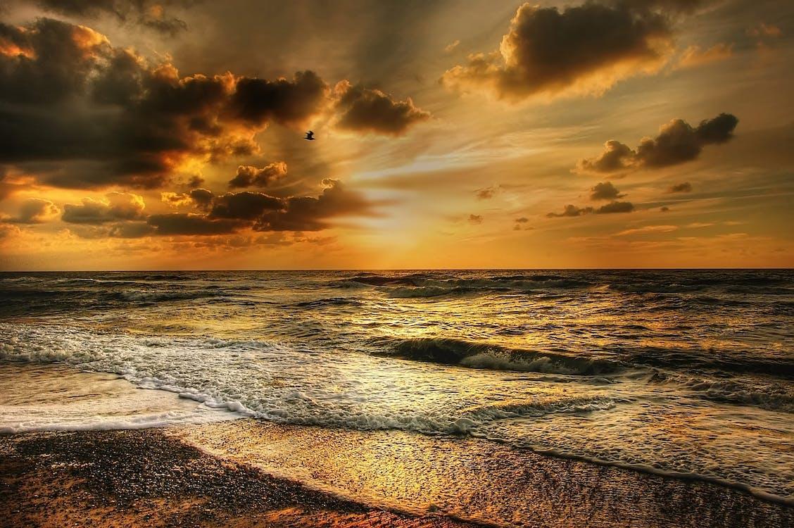 Surf, ακτή, άμμος
