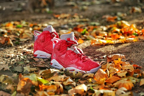 Red and White Nike Basketball Shoes on Brown Leaves