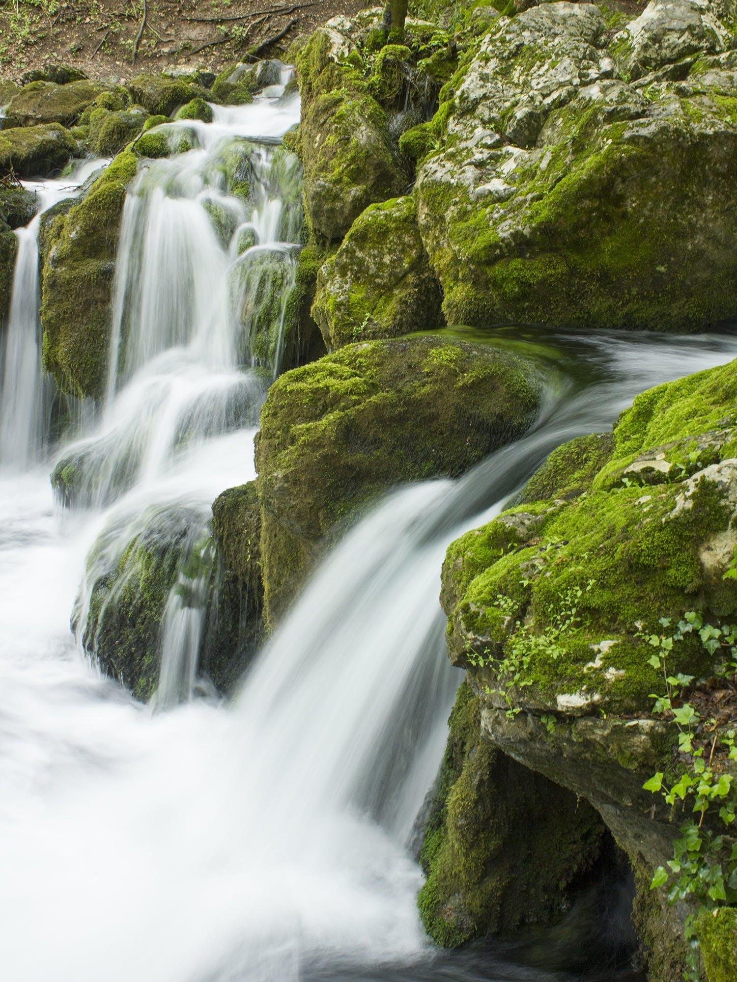 คลังภาพถ่ายฟรี ของ กระแสน้ำ, การเคลื่อนไหว, ตะไคร่น้ำ, ทัศนียภาพ