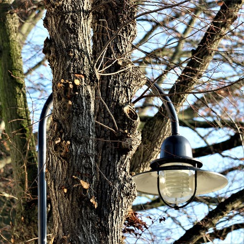 Základová fotografie zdarma na téma pouliční lampa