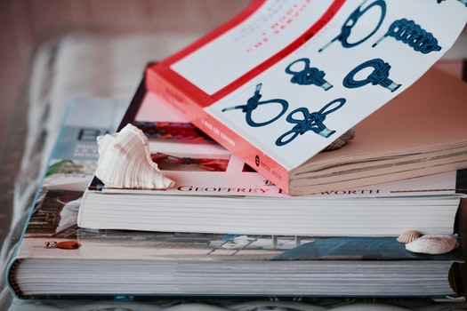 Free stock photo of summer, books, school, research