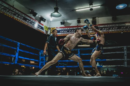 Free stock photo of boxing, culture, fight, fitness