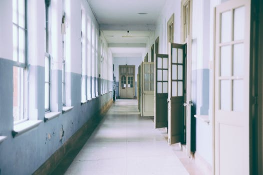 Free stock photo of building, school, window, ceiling