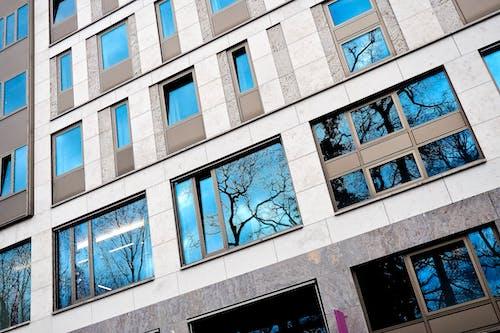 Imagine de stoc gratuită din albastru, apartament, arbori, arhitectură