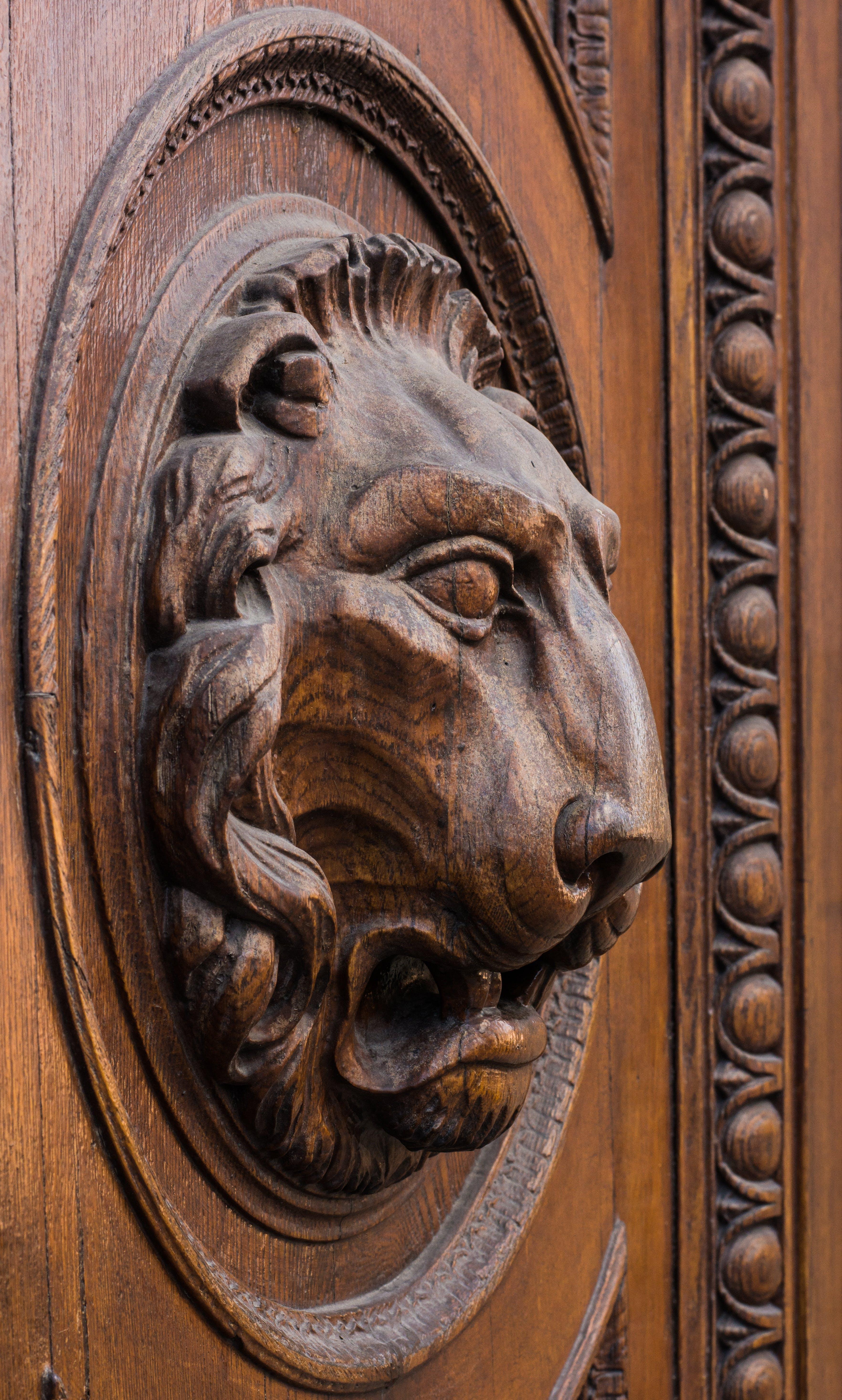 Free stock photo of wood, architecture, door, head