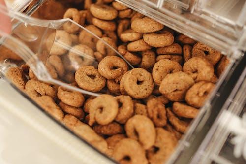 Kekse Im Durchsichtigen Plastikbehälter