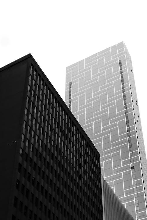 Yüksek Katlı Binanın Gri Tonlamalı Fotoğrafı