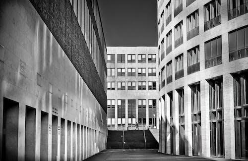 おとこ, オフィスビル, ガラスの窓, コンクリートの無料の写真素材