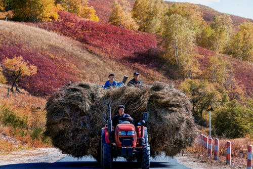 下田, 交通系統, 拖拉機, 收成 的 免費圖庫相片