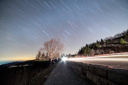açık, ağaçlar, akşam, doğa içeren Ücretsiz stok fotoğraf