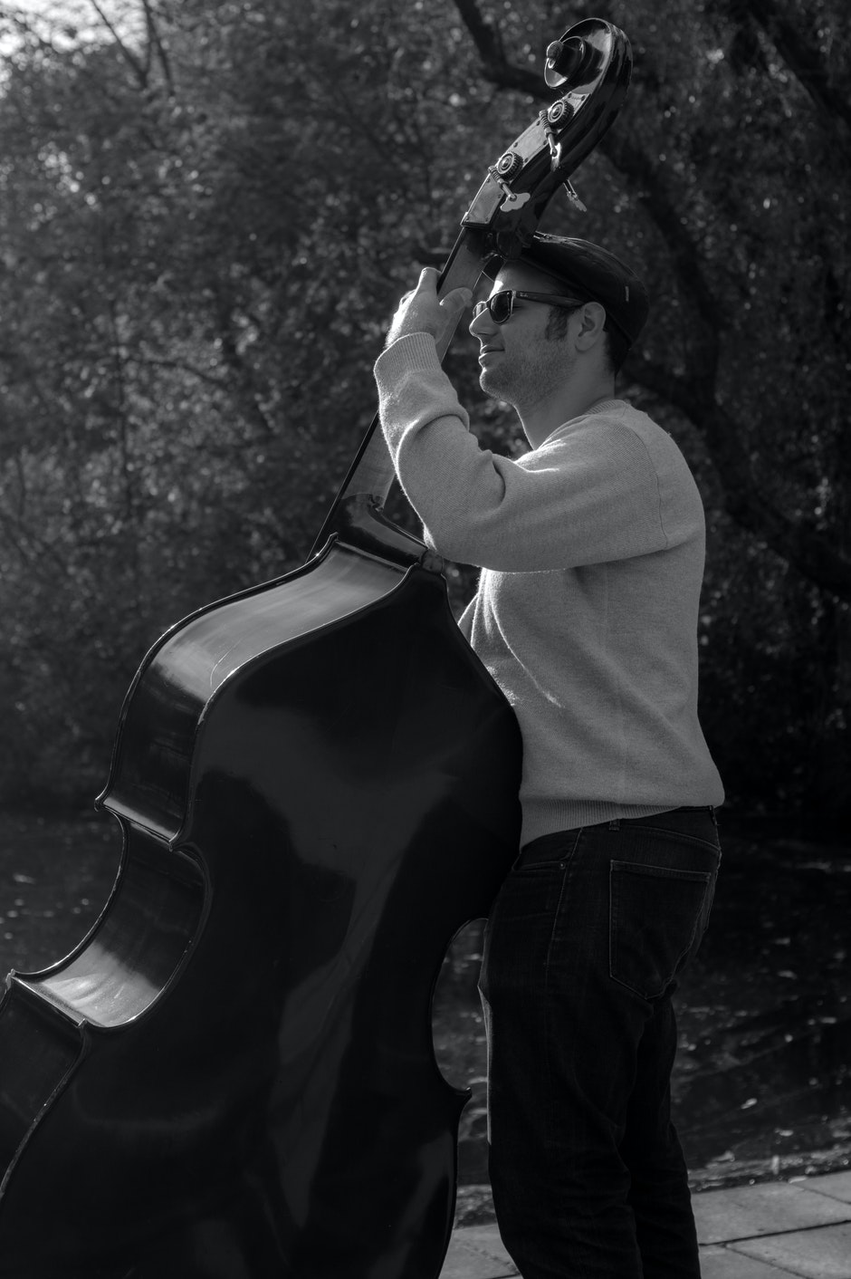 black-and-white, contrabass, double bass