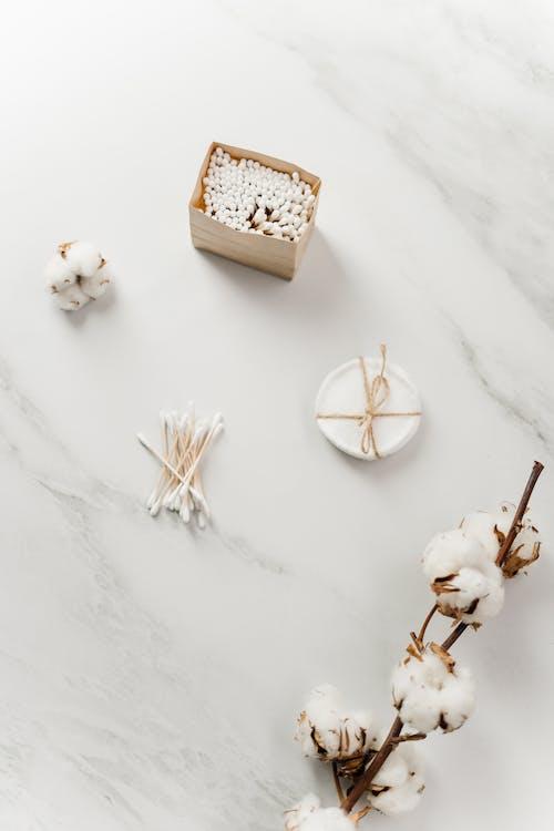 Beyaz Ve Kahverengi Ahşap Ev Minyatür