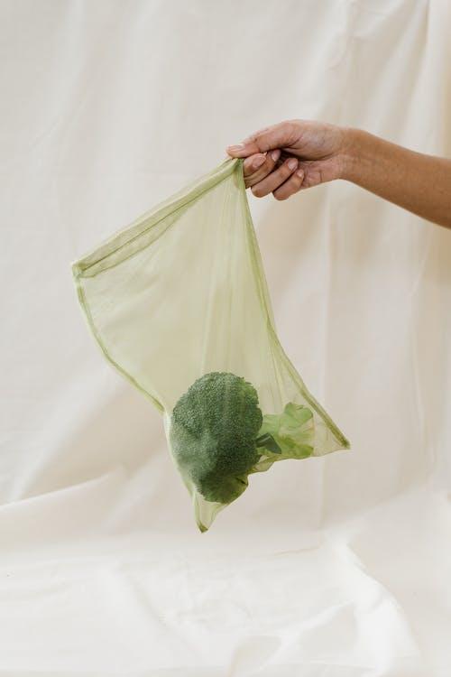 명확한 가방에 녹색 브로콜리를 들고 사람