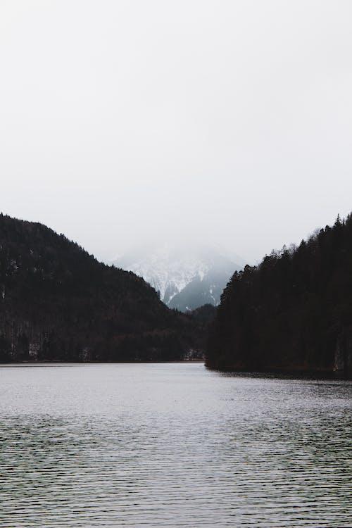 Ingyenes stockfotó borongós, fenyőfák, folyó, hegyek témában