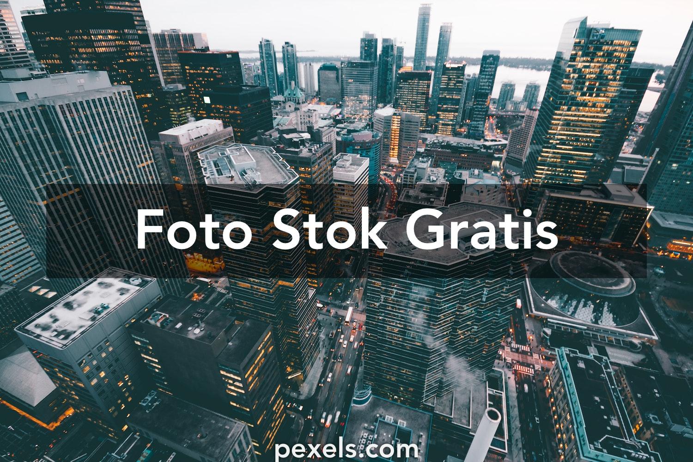 40 000 Foto Resolusi Tinggi Terbaik Unduh Gratis 100 Foto Stok Pexels