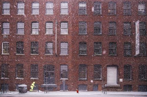 Ingyenes stockfotó ablakok, építészet, épület, épülethomlokzat témában