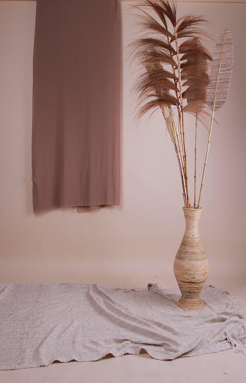 Brown Plant In Brown Vase