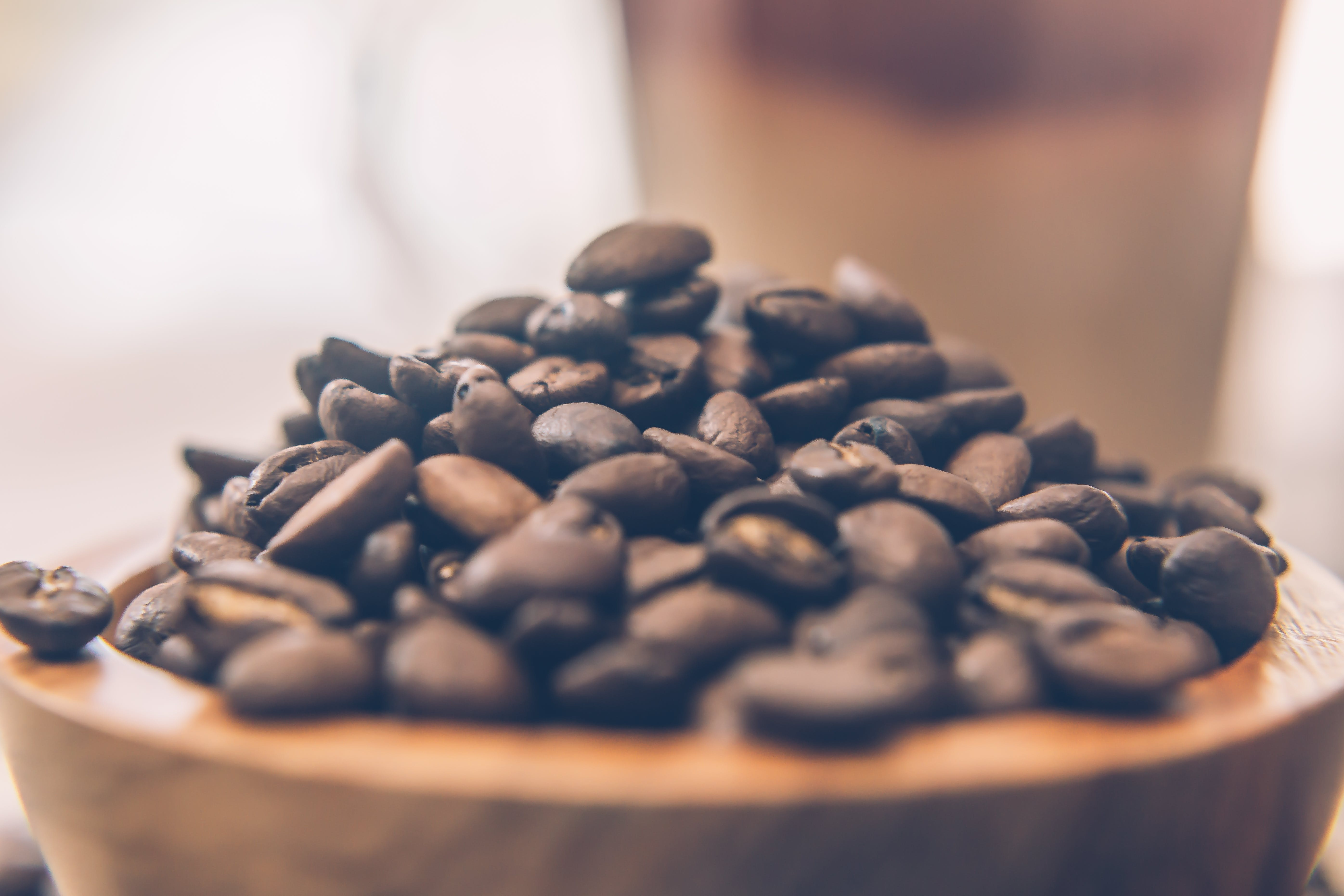 Coffee Beans on Brown Wooden Bowl