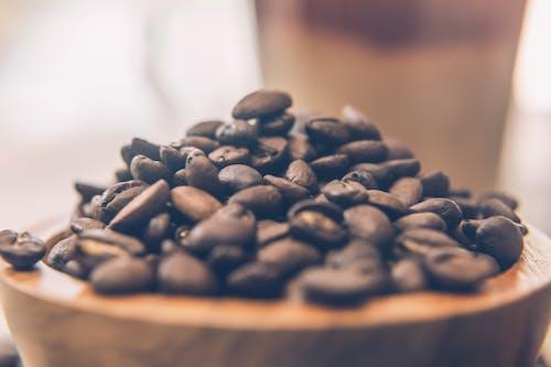 Gratis lagerfoto af kaffe, kaffebønner, koffein, ristet