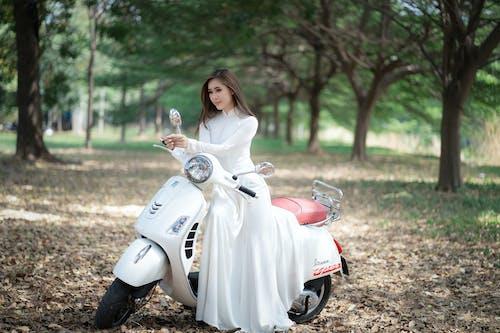 Foto d'estoc gratuïta de arbre, asiàtica, boda, calma