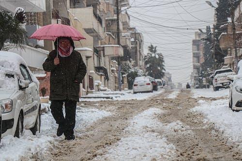 Free stock photo of Al-Qamishli, alone, snow