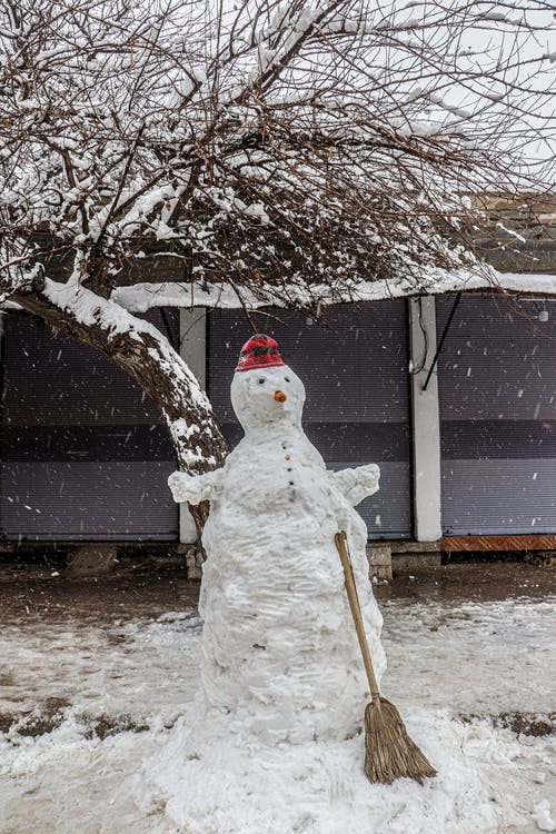Free stock photo of snow, snowfall, snowman