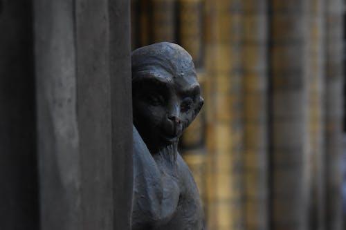 Free stock photo of decoration, london, monkey, museum