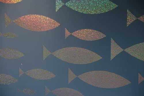 Foto profissional grátis de brilho, conhecimento, peixe, peixe de glitter