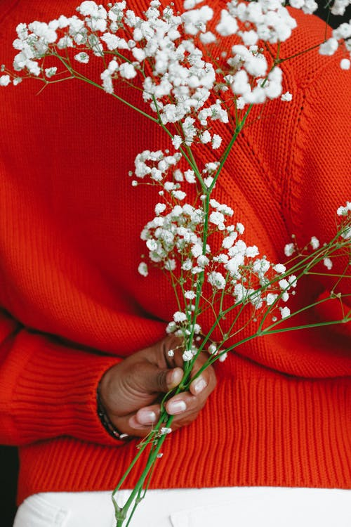 Back view of faceless ethnic woman in vivid red knitwear holding branch of baby breath flower behind back