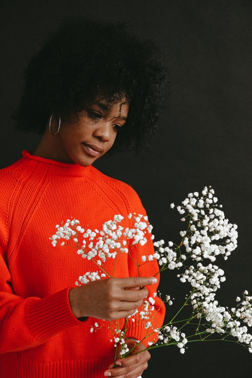 Charming young African American female in bright red sweater holding bunch of Gypsophila flowers on dark background