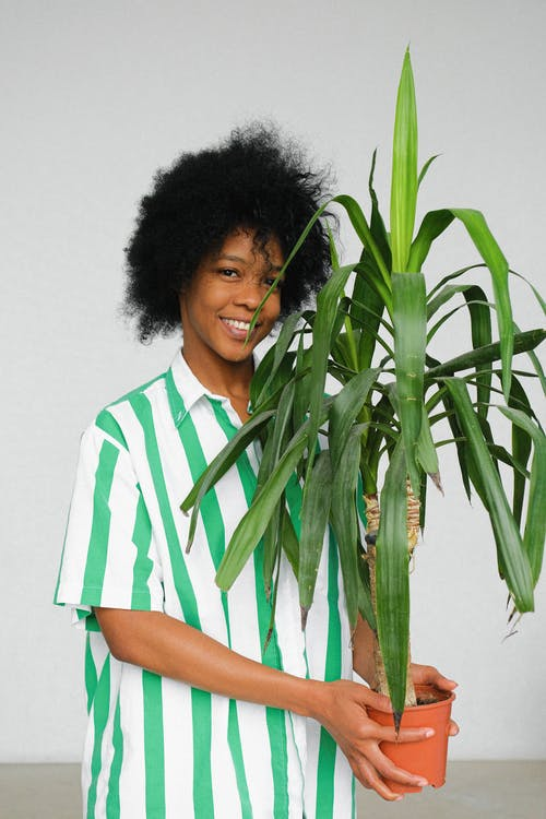Photo of Smiling Woman in White and Green Striped Shirt Standing While Carrying a House Plant