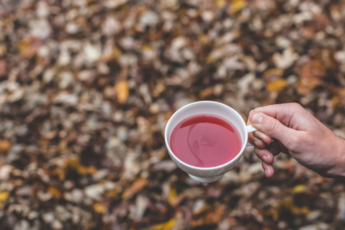 Selective Focus of Person Holding White Teacup